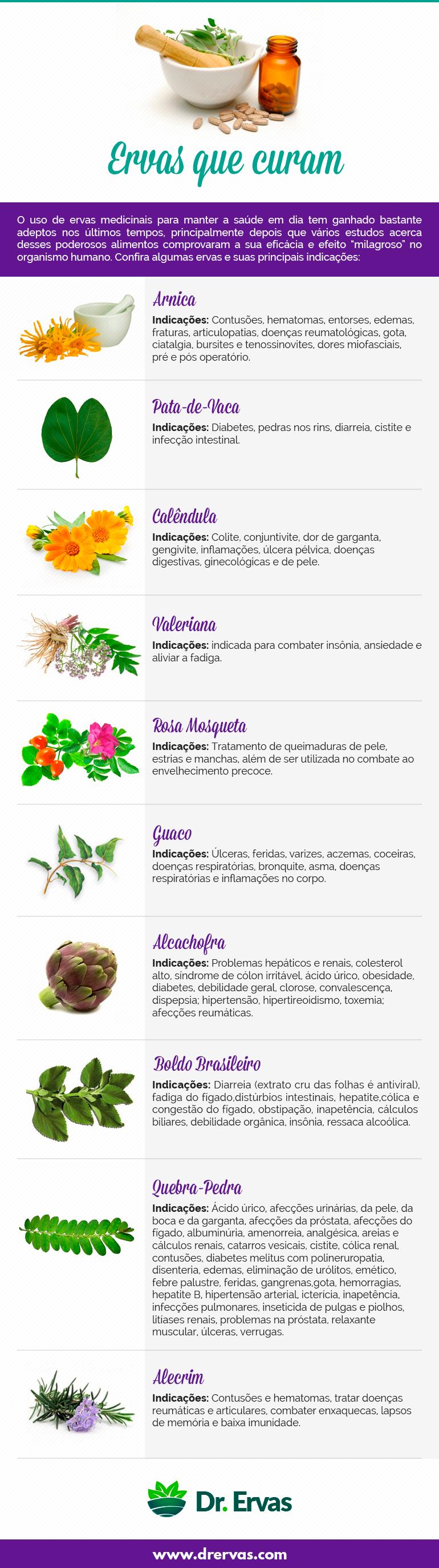 Ervas que curam infográfico