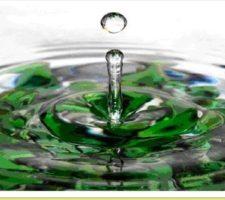 banho de manjericão