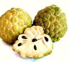 Pinha Fruta do Conde