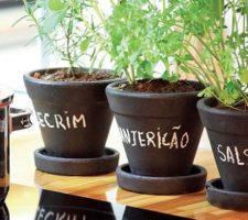 dicas para plantar em casa