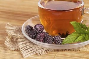chá da folha de amora