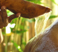 banho de guiné