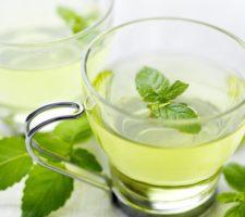 chá de malvarisco